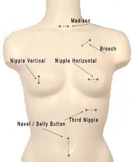 chart-body-piercing