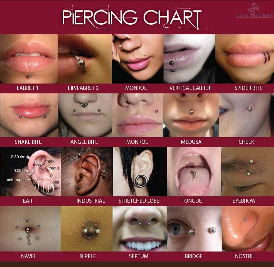 Body and face piercing hanley stoke on trent decide what body piercing you would like pooptronica Choice Image